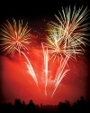 Corporate Firework Displays for all special occasions.