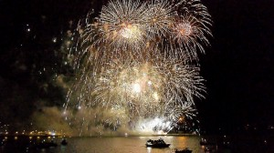 Bonfire Night Professional Fireworks Displays